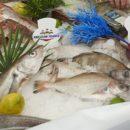 Defi ports de peche voiliers festivites etal poissonnier