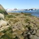 Vieux môle et cale Raie sur le port du Rosmeur